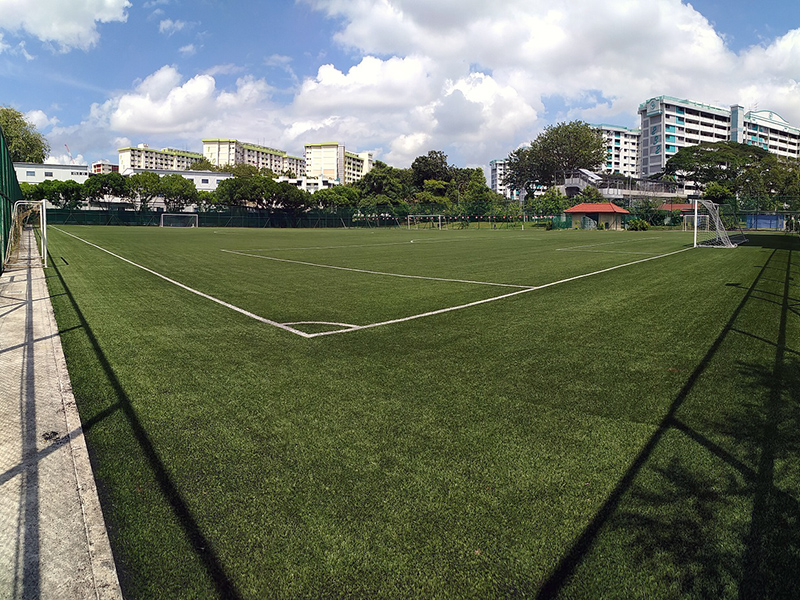 Mayflower Secondary School Field
