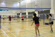 Badminton Interest Group