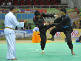 Silat rules